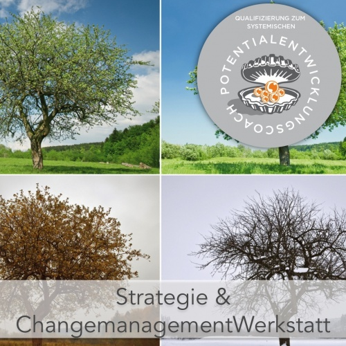 Perspektive VeränderungsManagement & StrategieCoaching